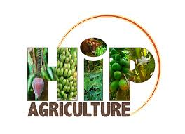 permaculture, sustainability, farming, hawaii