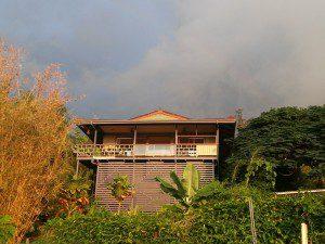 permaculture, eco living, big island, hawaii