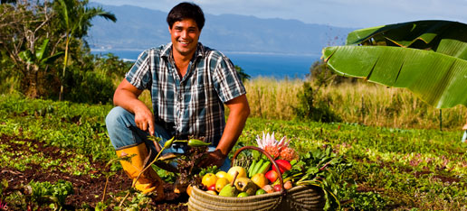 Guy with large baskets of fruit, ocean and mountains in the back - Oahu Farmers Market