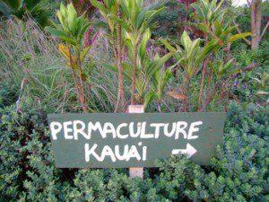 sustainable, eco, farming